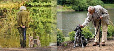 Mit einem vierbeinigen Begleiter an der Seite fühlen wir uns wohl – ein Seniorenhandy mit Notruf schafft zusätzliche Sicherheit. Foto: pixabay / Mabel Amber / sandra / stock.adobe.com / Emporia / akz-o