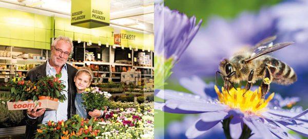 Insektenschutz im heimischen Garten: Jeder einzelne Gartenbesitzer kann viel für die Erhaltung der Artenvielfalt tun.