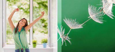 Wirkungsvoll, dabei ganz ohne Nebenwirkungen: Pollenschutz an Fenstern halten mehr als 97 Prozent der Birken- und Gräserpollen ab