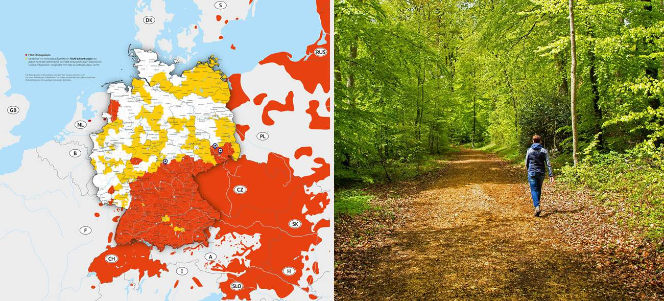 Zecken: Risikogebiete in Deutschland