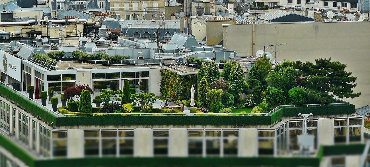 Naturnahe Auszeiten in luftiger Höhe dank Dachbegrünung